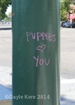 """Graffiti that reads, """"Puppies Love You"""""""
